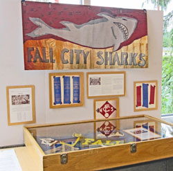 Fall City Library Pop Up Museum
